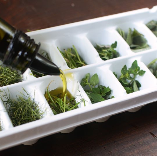 How-To Preserve and Freeze Fresh Herbs in Olive Oil: