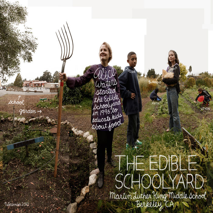 Edible School Yard Project
