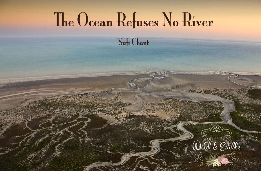 ocean-refuses-no-river